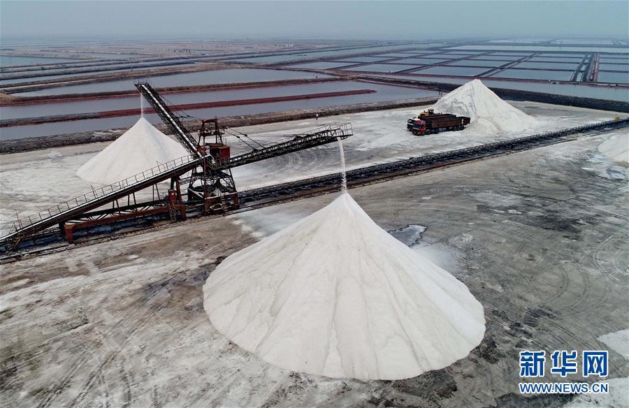 (經濟)(1)收穫春鹽