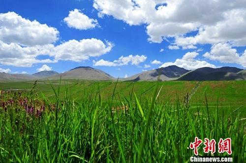 第二轮中央生态环保督察将启动 央企或被纳入(