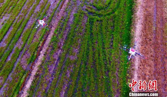 农业农村部通报去年农药监督抽查结果:合格率93.2%