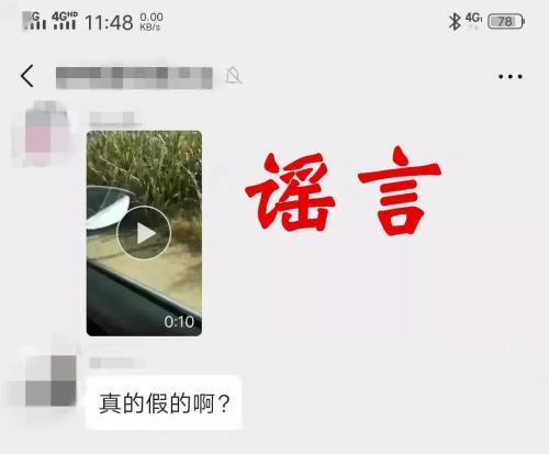 """男子发视频谎称""""金钱豹在河南南乐县出没"""" 已"""